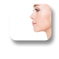 Gallery Face Icon